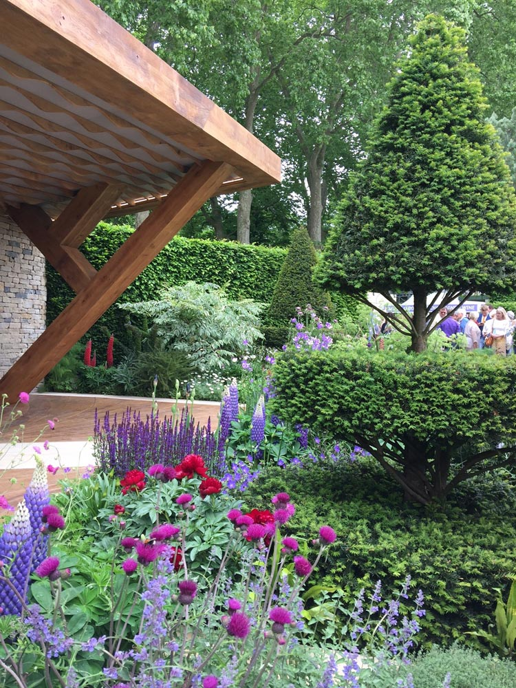 Deepdale Trees Supplying Exhibits At The 2017 Rhs